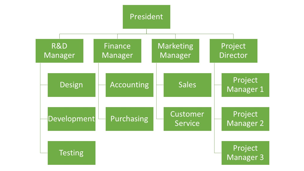 Matrix Organizational Structure – Global NP Solutions