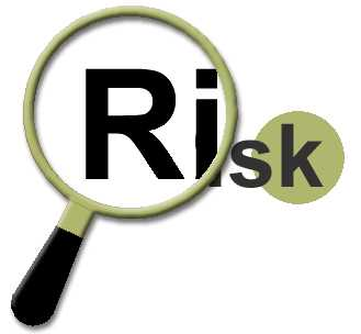 Understanding Project Risk
